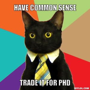 business-cat-meme-generator-have-common-sense-trade-it-for-phd-4db2dc